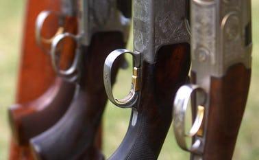 Tag et jagttegnskursus i Ansager Jagtforening hver onsdag 18.30-20.30