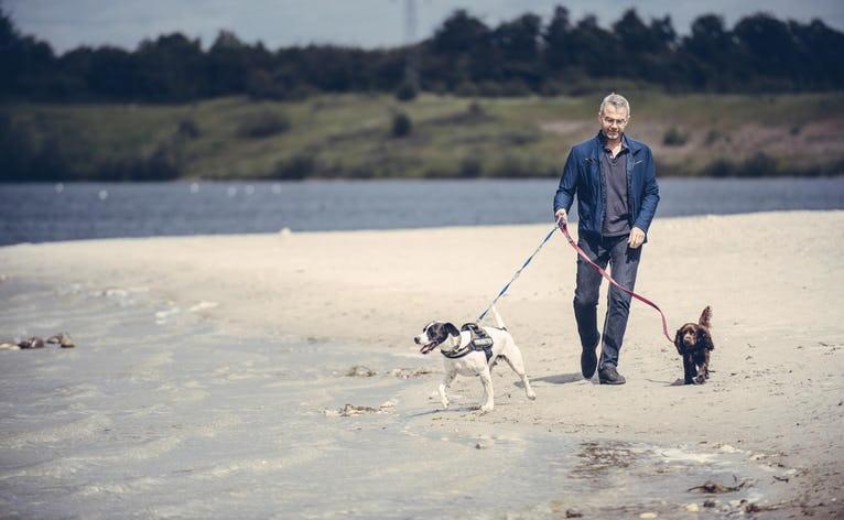 Fra 1. april skal hunden have snor på, når den er med på stranden