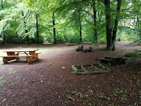 Legepladsen i Skoven